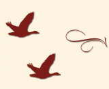 Symbolbild Gänse