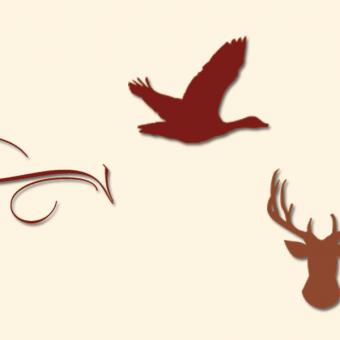 Symbolbild Wild & Gans